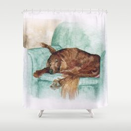 Digital Indian 12 Shower Curtain