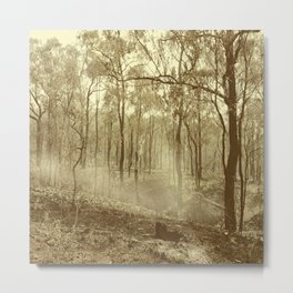 Stunning view of bushfire aftermath Metal Print