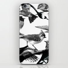 A Volery of Birds iPhone Skin