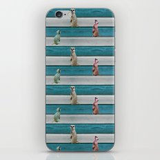 Meercat Beach Stripes iPhone & iPod Skin