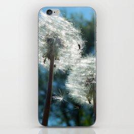 Dandelion Trees iPhone Skin