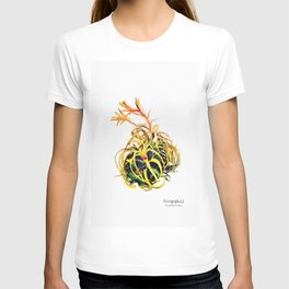 Tillandsia Xerographica Air Plant Watercolor T-shirt