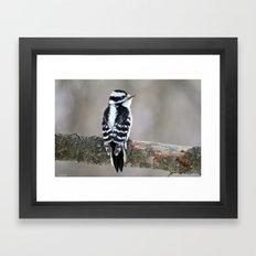 Stunning in Black and White Framed Art Print