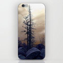 Dead Tree At Needles Highway iPhone Skin