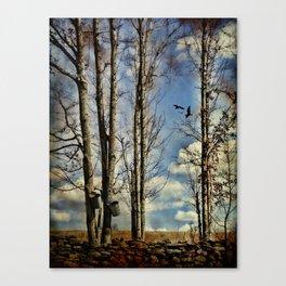 Collecting Sap Canvas Print