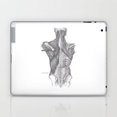 Anatomy Laptop & iPad Skin
