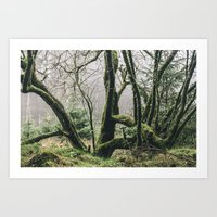 - Natural Green Life - Art Print