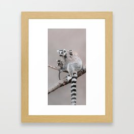 RINGTAILED LEMUR FAMILY by Monika Strigel Framed Art Print