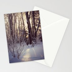 Wind Blown Snow Flakes Stationery Cards