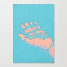 Mono No Aware Canvas Print