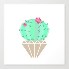 Round cactus in the goshka Canvas Print
