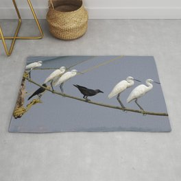 Egrets and Crows, Cochin, India Rug