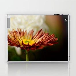 A Glow Laptop & iPad Skin