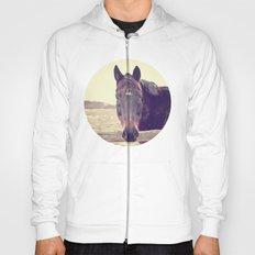 Hello Horse  Hoody