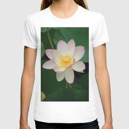 Lotus Blossom in Full Bloom T-shirt