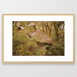 Shed in Woods Framed Art Print