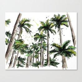 Palm-trees Canvas Print