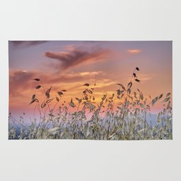 Summer sunset. Wonderful fields Rug
