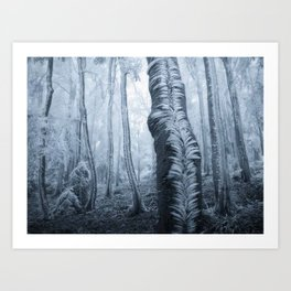 ıce forest Art Print