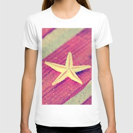 Stars and Stripes on the beach T-shirt