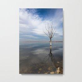 Dry tree submerged in the lake. Metal Print