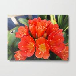 flowers - unknown Metal Print