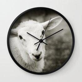 Lamb Sheep Wall Clock