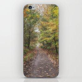 Autumn Cycle Path iPhone Skin
