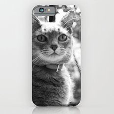 Le chat iPhone 6s Slim Case