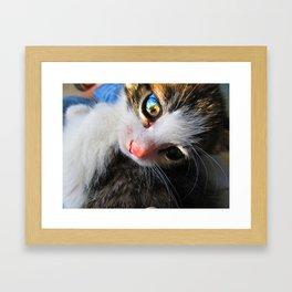 Jewel Eyes Framed Art Print