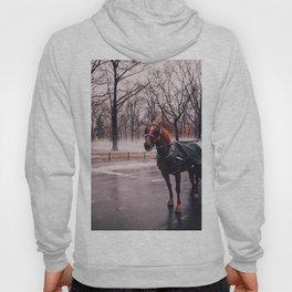 NYC Horse and Carriage Hoody