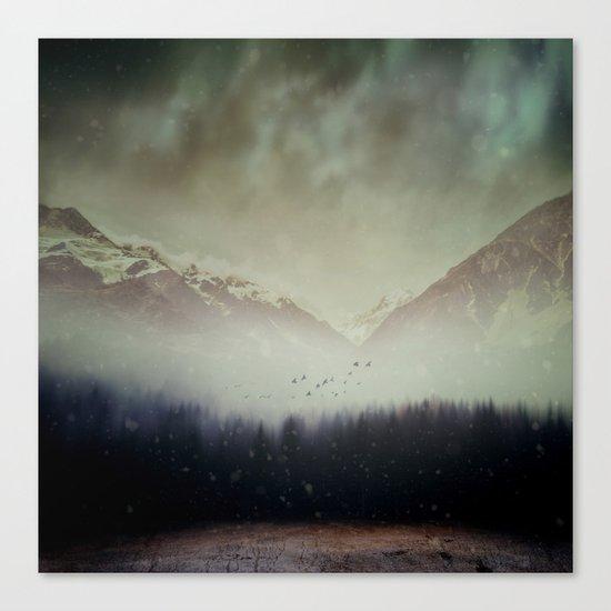 Winter Shade Canvas Print