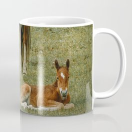 Horse And Foal Coffee Mug