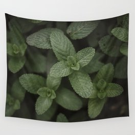 Mint at a desert farm in The Negev, Israel Wall Tapestry