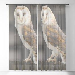 Barn Owl Sheer Curtain