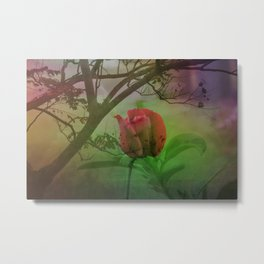 Dipped in Dew, Nestled by Nature Metal Print