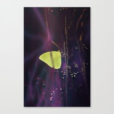 Yellow Butterfly in the Mystic Purple Meadow Canvas Print