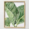 Banana Leaves by marinasotiriou