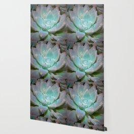 Pastel Succulent 2 Wallpaper