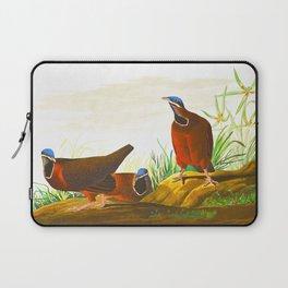 Blue-headed Pigeon Laptop Sleeve