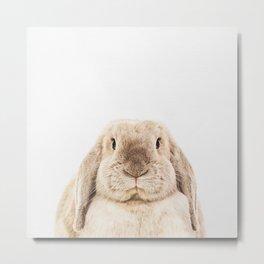 Bunny Rabbit Metal Print