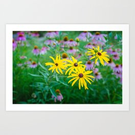 Wildflowers at Dusk Art Print