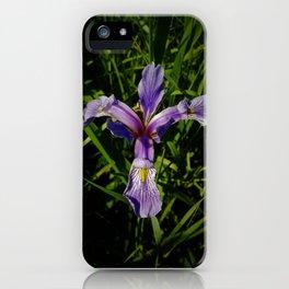 Blue Flag iPhone Case