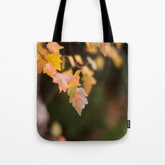 Autumn Orange Tote Bag