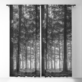 Black and white woods - North Kessock, Highlands, Scotland Blackout Curtain