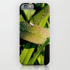 dew iPhone 6s Slim Case