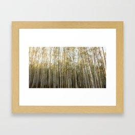 Backyard Density Framed Art Print