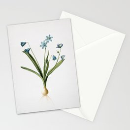 Vintage Scilla Amoena Illustration Stationery Cards