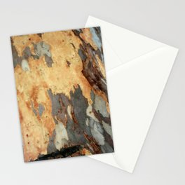 Colorful Patches And Interesting Patterns Of Bark Stationery Cards