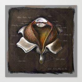 Fruit of Life series - Eye, by Chok Bun Lam Canvas Print